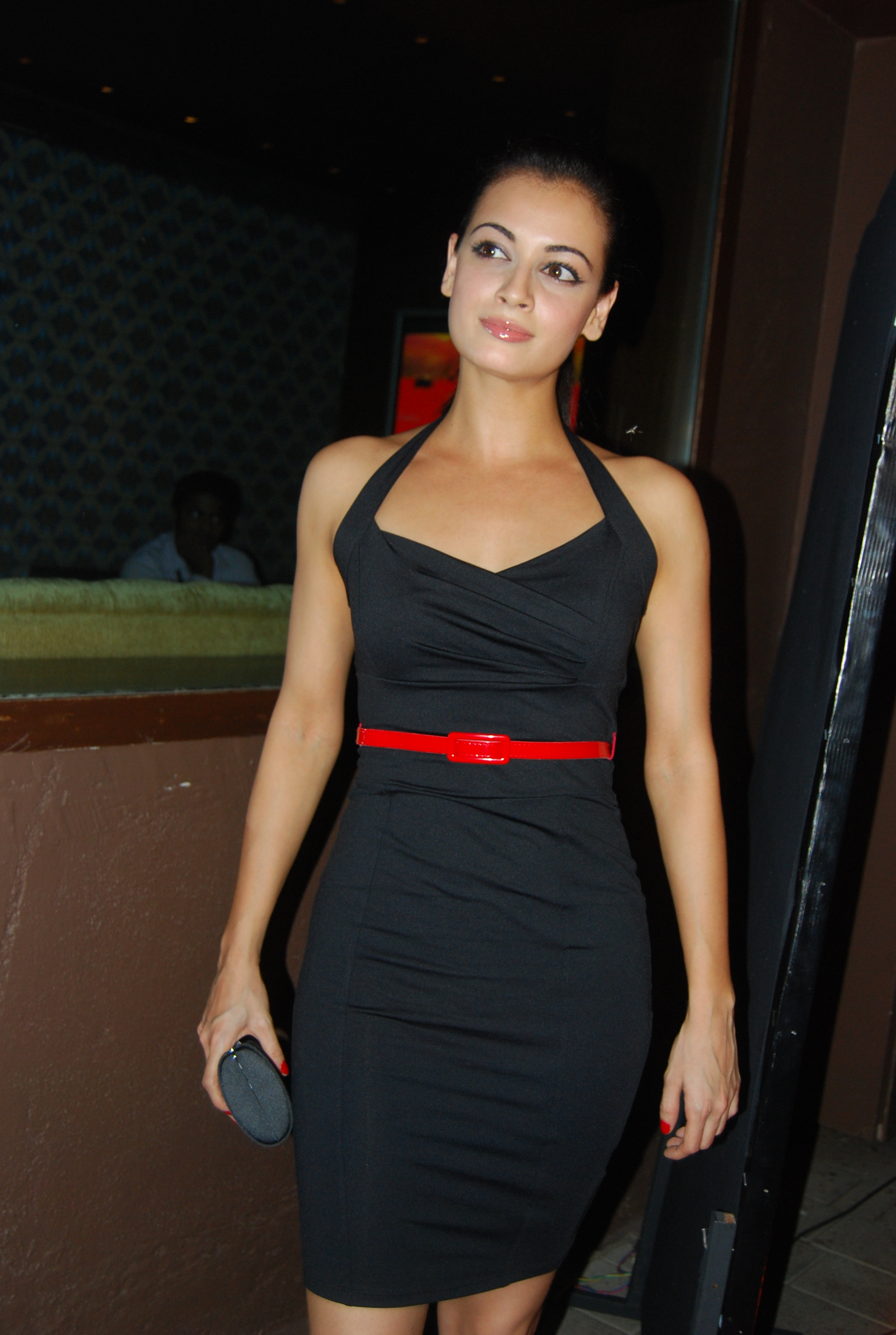 Dia Mirza  Photo Press-8846